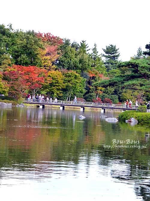 初秋の昭和記念公園その3(ラスト)_d0128697_0393895.jpg