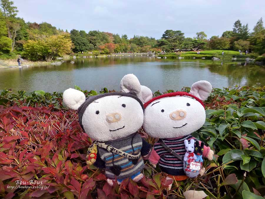 初秋の昭和記念公園その3(ラスト)_d0128697_0395129.jpg