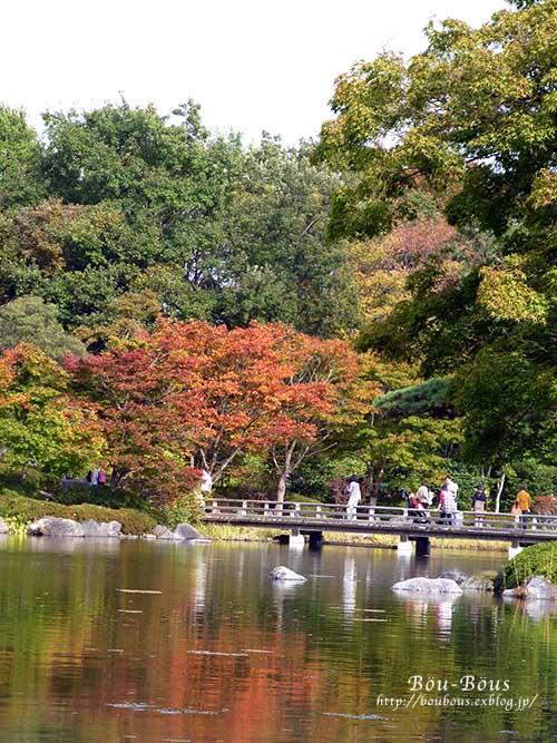 初秋の昭和記念公園その3(ラスト)_d0128697_039557.jpg