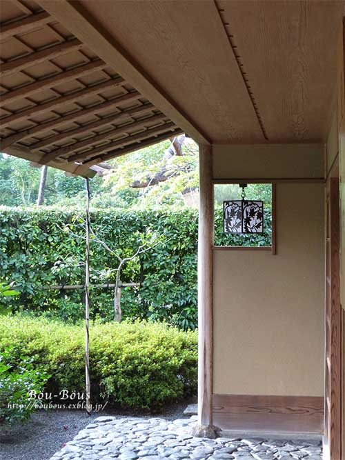 初秋の昭和記念公園その3(ラスト)_d0128697_1194220.jpg
