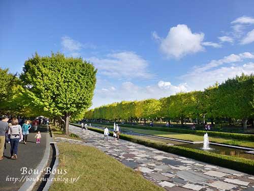 初秋の昭和記念公園その3(ラスト)_d0128697_1441334.jpg
