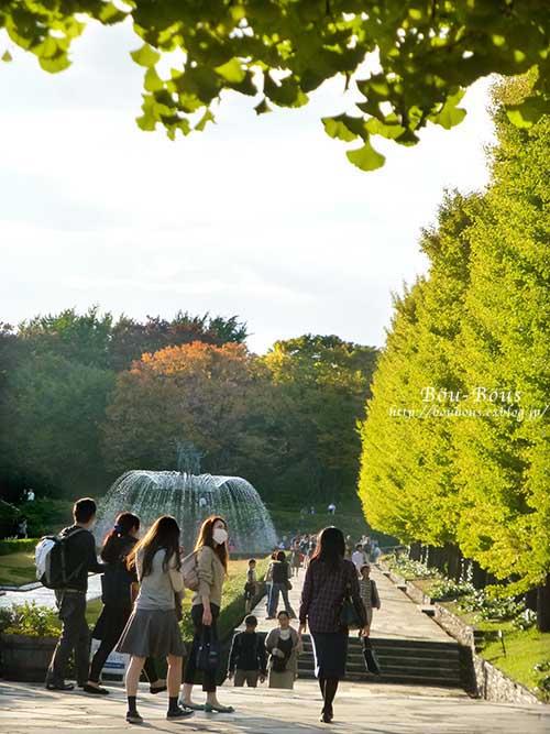 初秋の昭和記念公園その3(ラスト)_d0128697_1513879.jpg