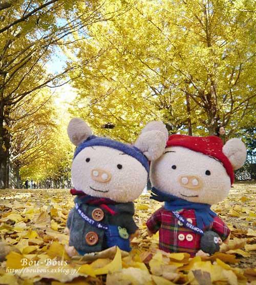 初秋の昭和記念公園その3(ラスト)_d0128697_2133765.jpg