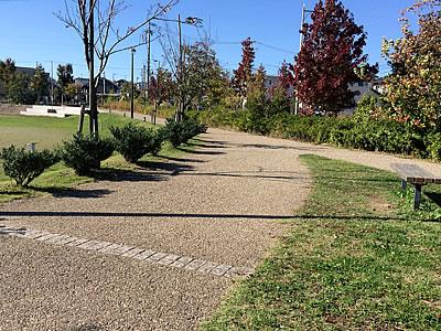 レッスンデー&公園散歩_d0207298_16374665.jpg