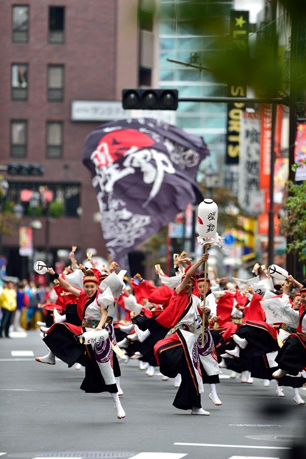 東京よさこい「ダンスカンパニー躍動」_f0184198_1738796.jpg
