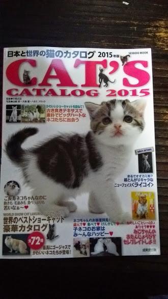 2015年 日本と世界の猫カタログ_e0033609_19142157.jpg