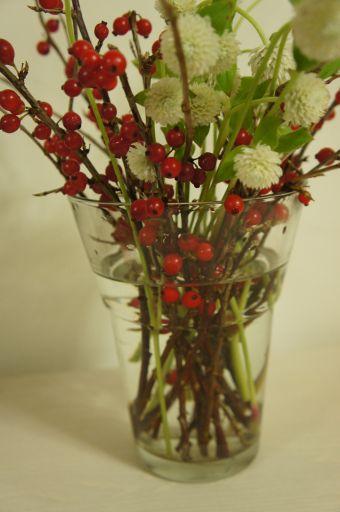 お花ってほんとにかわいい_f0155431_21262973.jpg