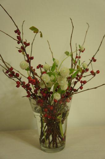 お花ってほんとにかわいい_f0155431_2126973.jpg