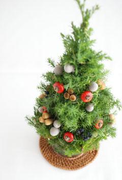 ミニクリスマスツリー@スペシャルイベント_b0065587_1519455.jpg