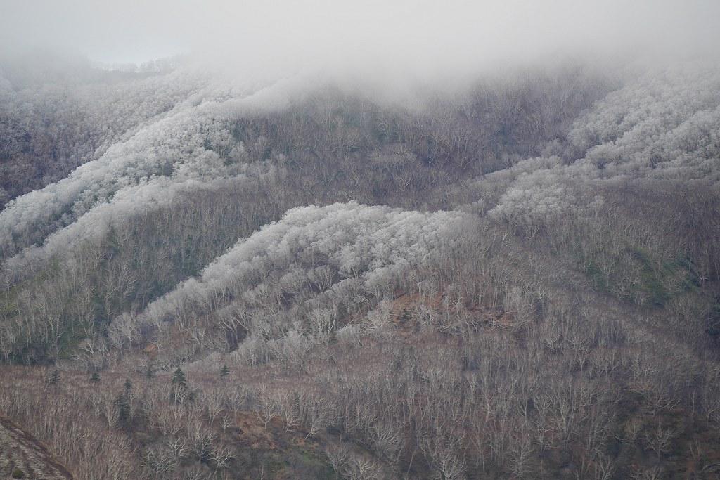 初冠雪の樽前山、10月28日_f0138096_1318446.jpg