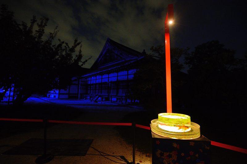 アートアクアリウム城~京都・金魚の舞~ 其の一_f0032011_2010265.jpg
