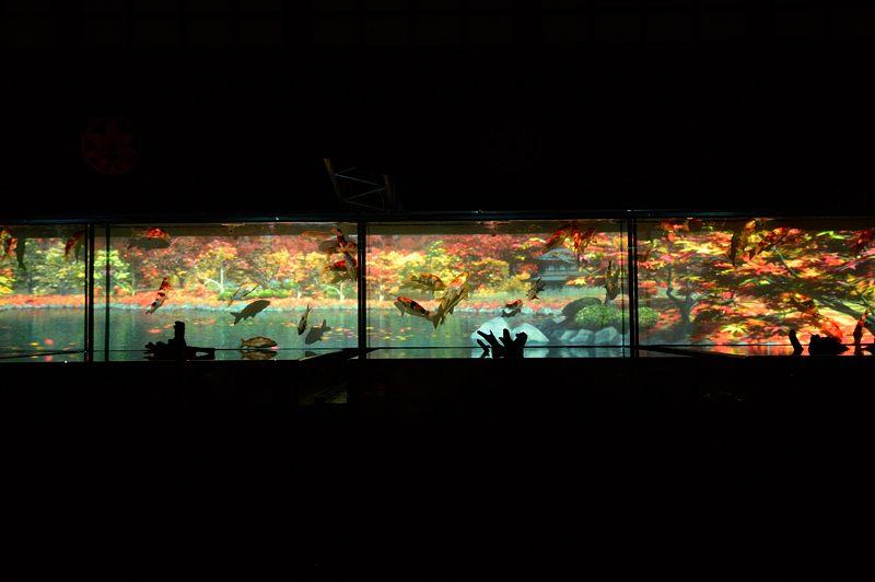 アートアクアリウム城~京都・金魚の舞~ 其の一_f0032011_2071548.jpg