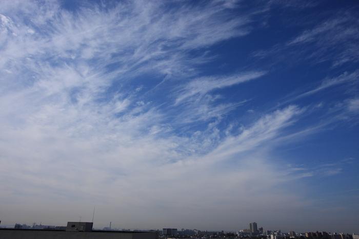 すじ雲 (巻雲)_b0268615_10445891.jpg