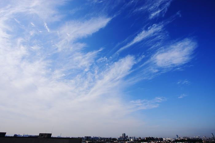 すじ雲 (巻雲)_b0268615_1046334.jpg