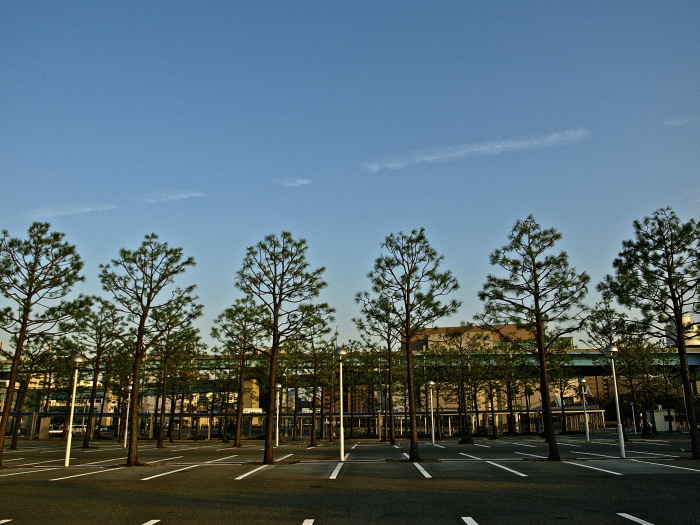 Sun set  博多港_f0315034_13280189.jpg