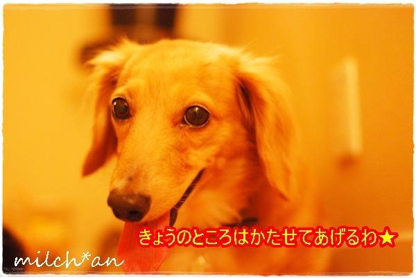 b0115642_236320.jpg