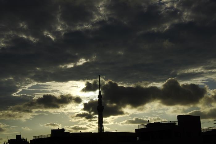d0185744_1859840.jpg