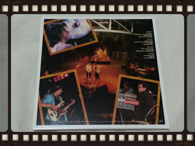 STEVIE RAY VAUGHAN AND DOUBLE TROUBLE / LIVE ALIVE_b0042308_025182.jpg
