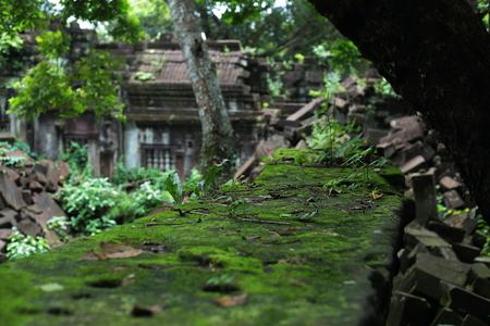 秋のブログパス1 カンボジアベンメリア_a0042928_2229973.jpg