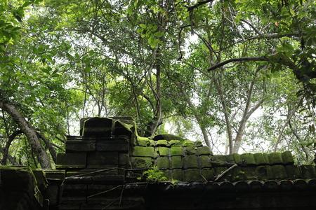 秋のブログパス1 カンボジアベンメリア_a0042928_224712100.jpg