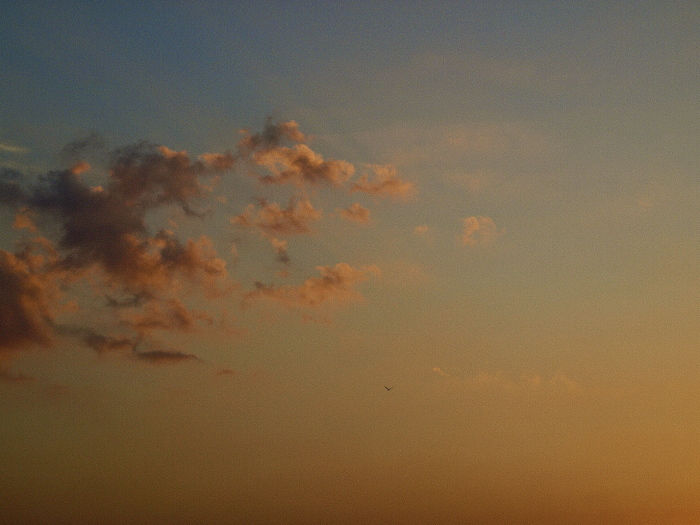 Sun set & Magic hour   博多港 _f0315034_13171167.jpg