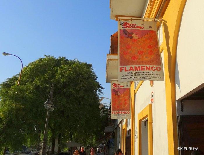 スペイン旅行記 13 フラメンコショー in セビーリャ_a0092659_3103875.jpg