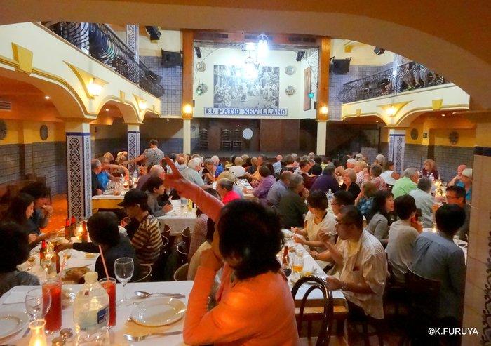 スペイン旅行記 13 フラメンコショー in セビーリャ_a0092659_3124558.jpg
