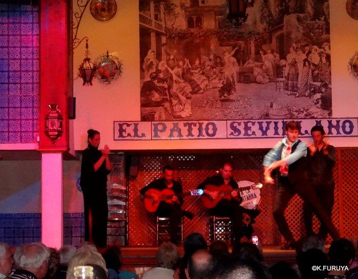 スペイン旅行記 13 フラメンコショー in セビーリャ_a0092659_3412626.jpg