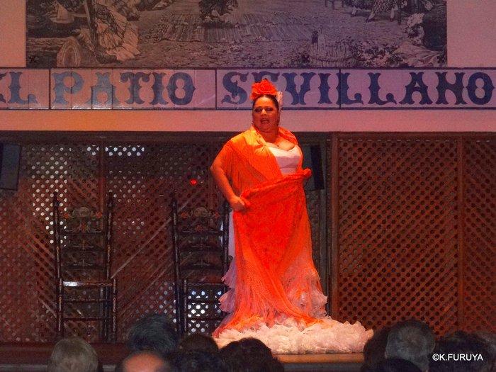 スペイン旅行記 13 フラメンコショー in セビーリャ_a0092659_3514157.jpg