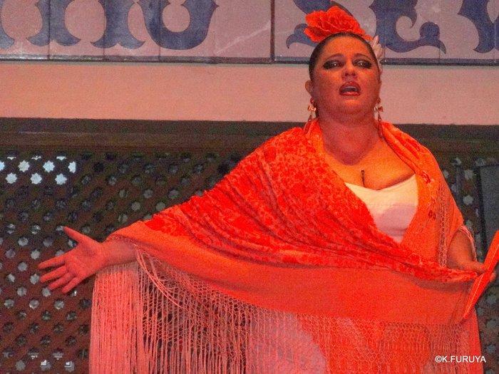 スペイン旅行記 13 フラメンコショー in セビーリャ_a0092659_3541558.jpg