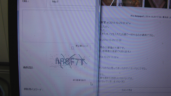 b0208961_8273058.jpg
