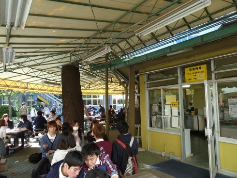 駒澤大学のパオ_c0092197_16440201.jpg