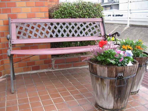 お花の植え替え♪_f0237698_1458613.jpg