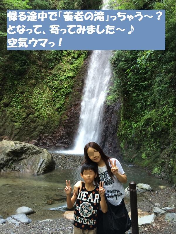 おくにゃん一家の夏休み~第二弾~_a0113003_10525548.jpg