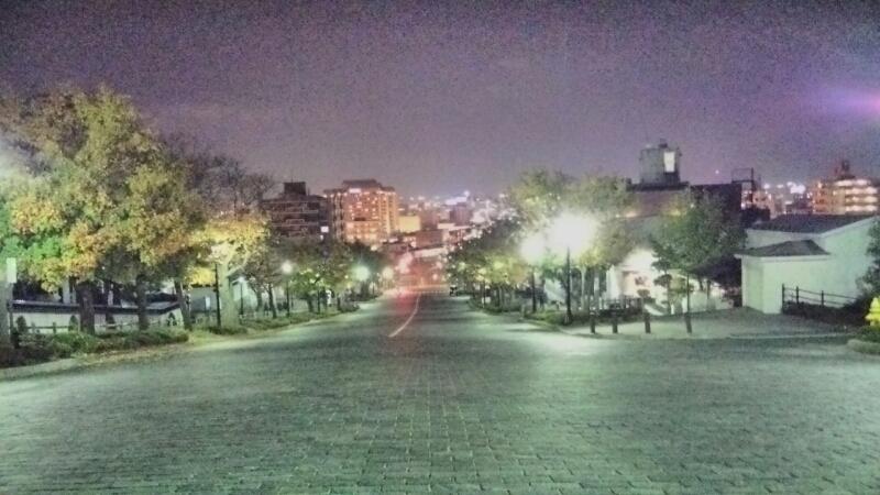 八幡坂_b0106766_062142.jpg