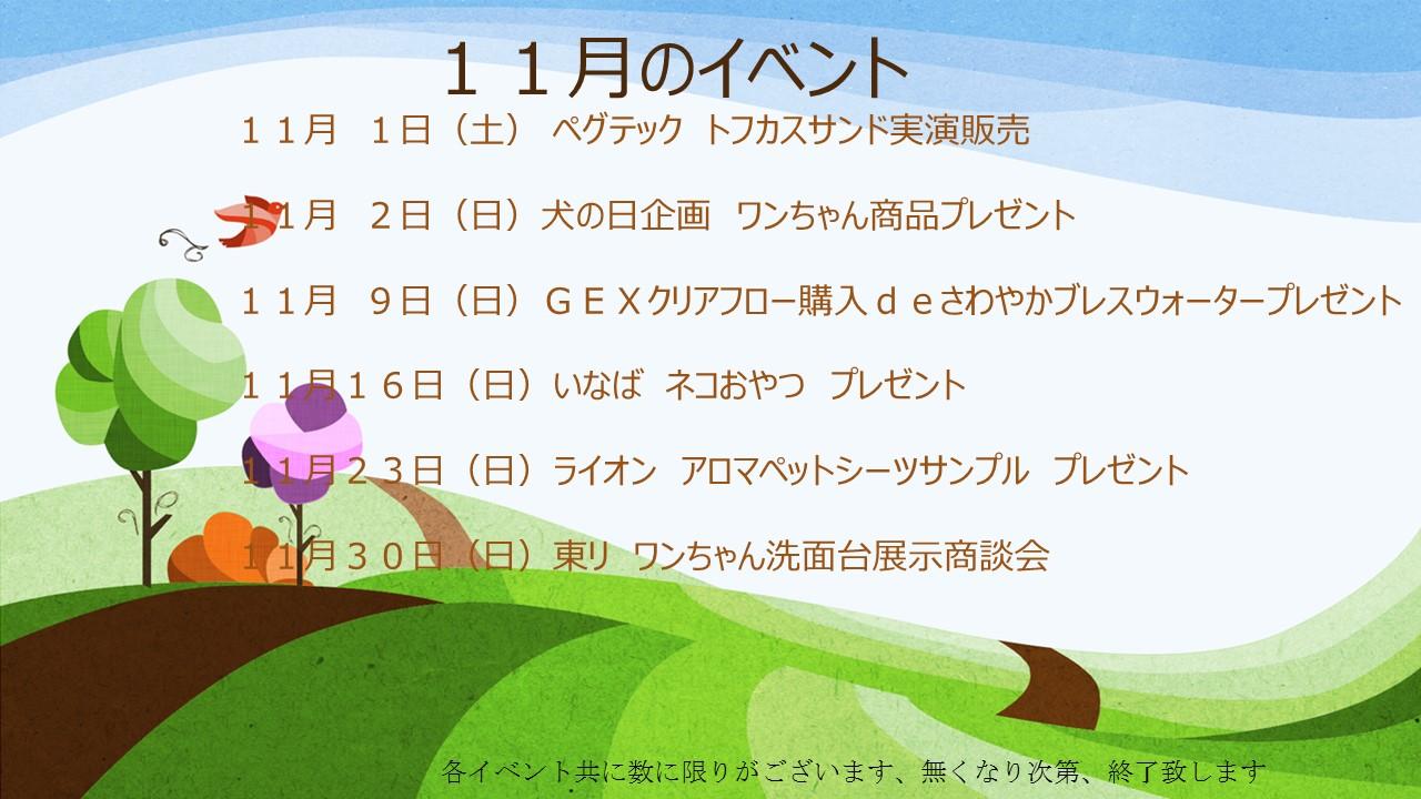 141101 11月のイベント告知_e0181866_10461139.jpg