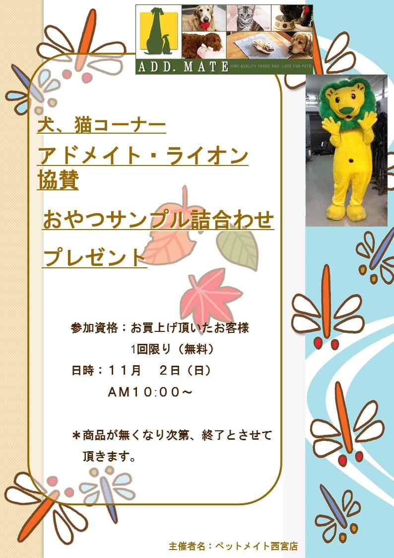 141101 11月のイベント告知_e0181866_10485215.jpg