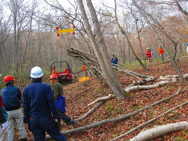 自伐型林業、北海道に初上陸_e0002820_2251713.jpg