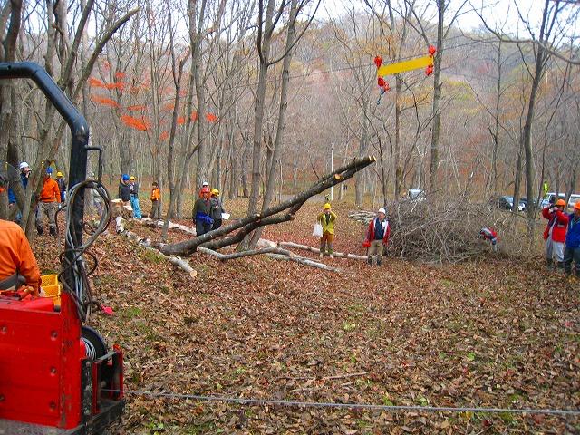 自伐型林業、北海道に初上陸_e0002820_225523.jpg