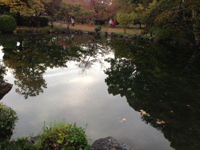 秋の渉成園  特別公開_c0223630_23575729.jpg