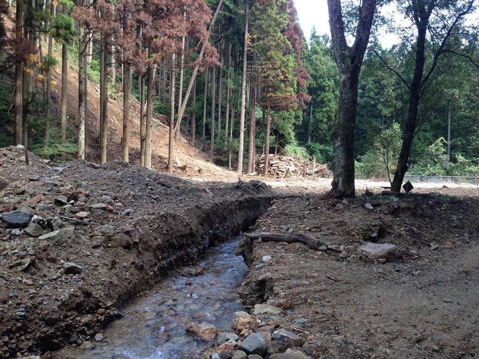 里山・森林整備の重要性_b0199244_23352082.jpg