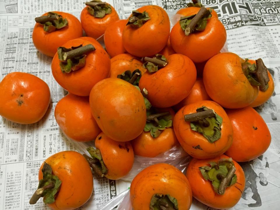 干し柿作り_b0199244_23513712.jpg