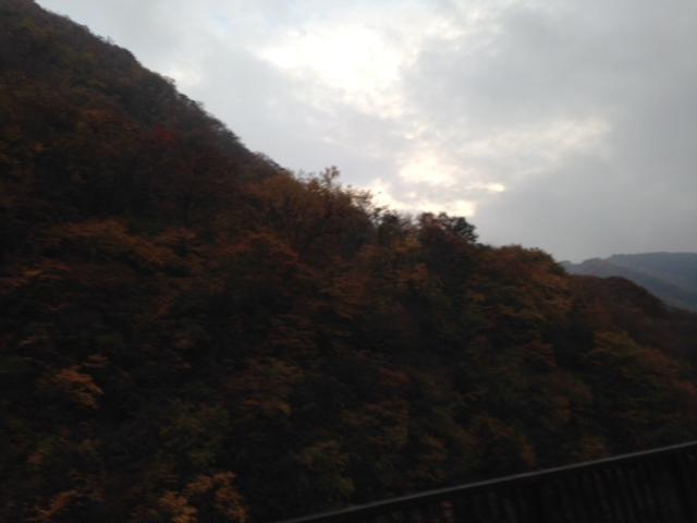 11月1日 来ましたぜ、りんご狩り!_d0171384_17234495.jpg