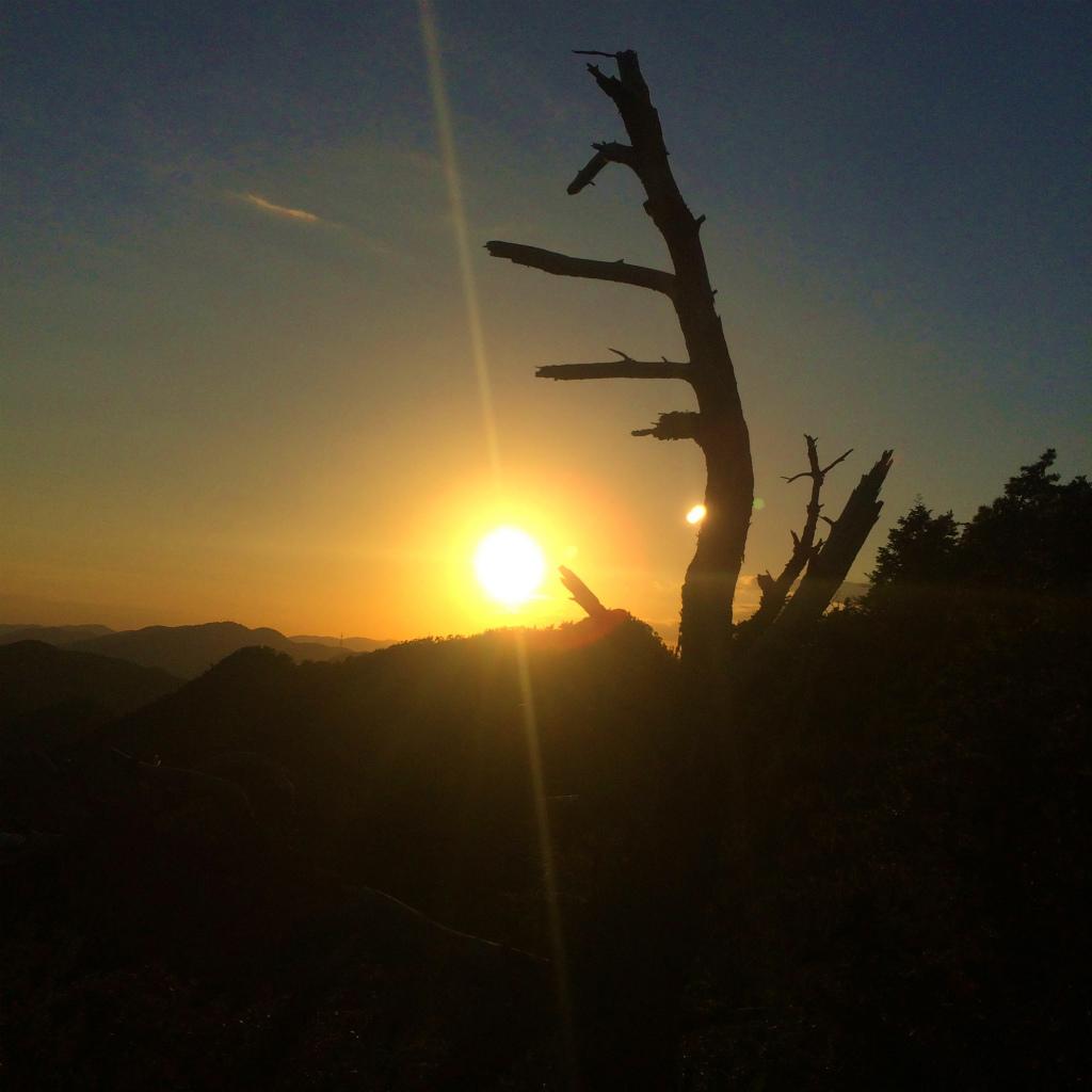 小野アルプス、和気アルプスScrambling & Mountain Running 2014/10/23_b0220886_10385732.jpg