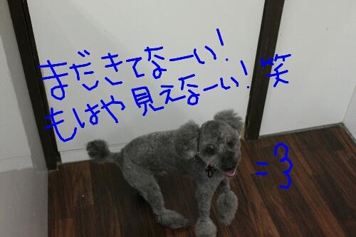 b0130018_9344941.jpg