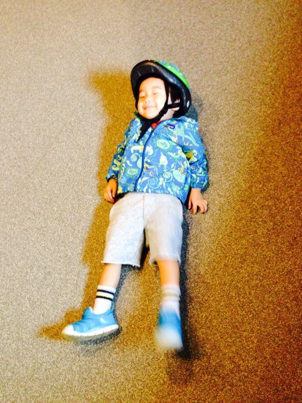 シオン3歳2ヶ月になりました!_e0253026_815385.jpg