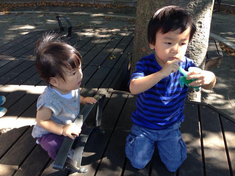 シオン3歳2ヶ月になりました!_e0253026_82018.jpg