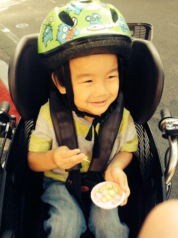シオン3歳2ヶ月になりました!_e0253026_82329.jpg