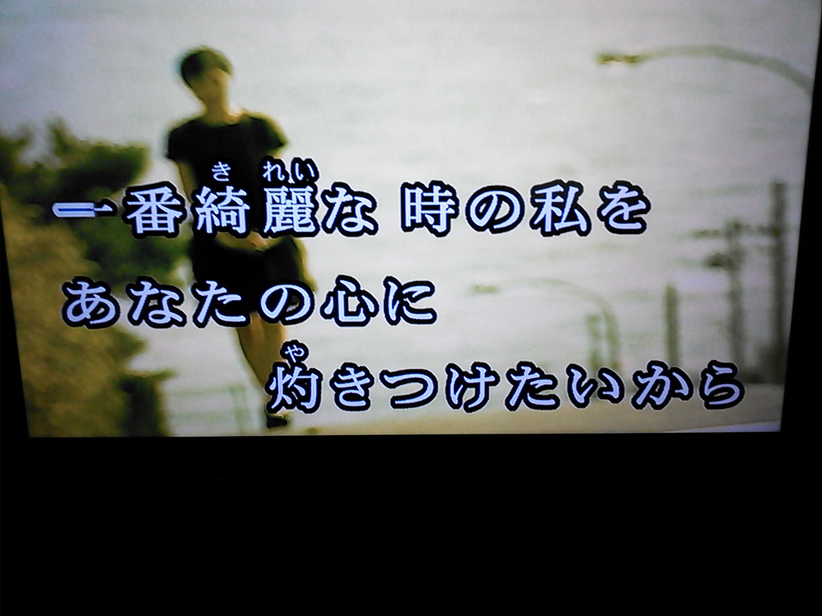 a0071459_19553264.jpg