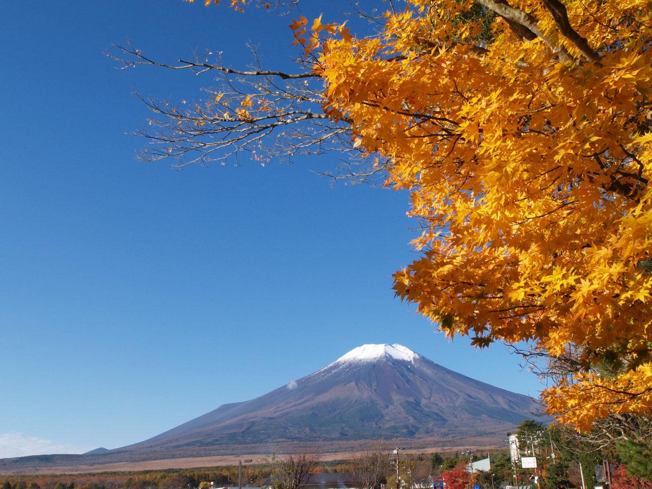 E-300と富士山と・・・_b0021375_18331424.jpg